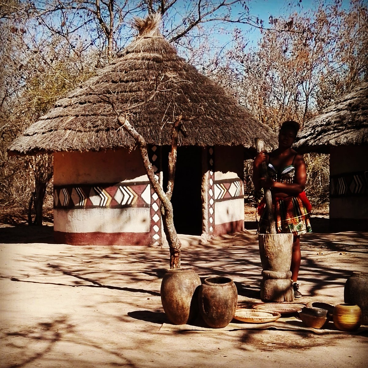 Peter Jacobs On Twitter Today I Ate The Famous Mopani Wurm In The Nyani Cultural Village Hoedspruit Limpopo Nyaniculturalvillage Mopani