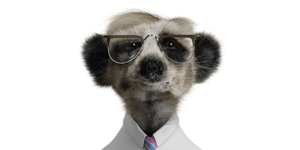 aleksandr orlov on twitter if you say sergei you are right what