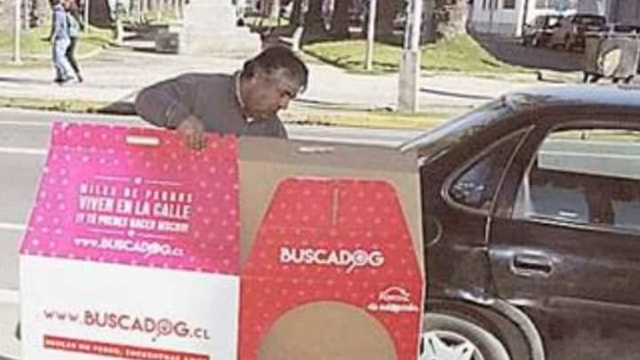 Desgraciados q roban casitas de perritos callejeros, este tipo llegó con su esposa en auto a sacar las de #Valpo https://t.co/iVTIq2deYO