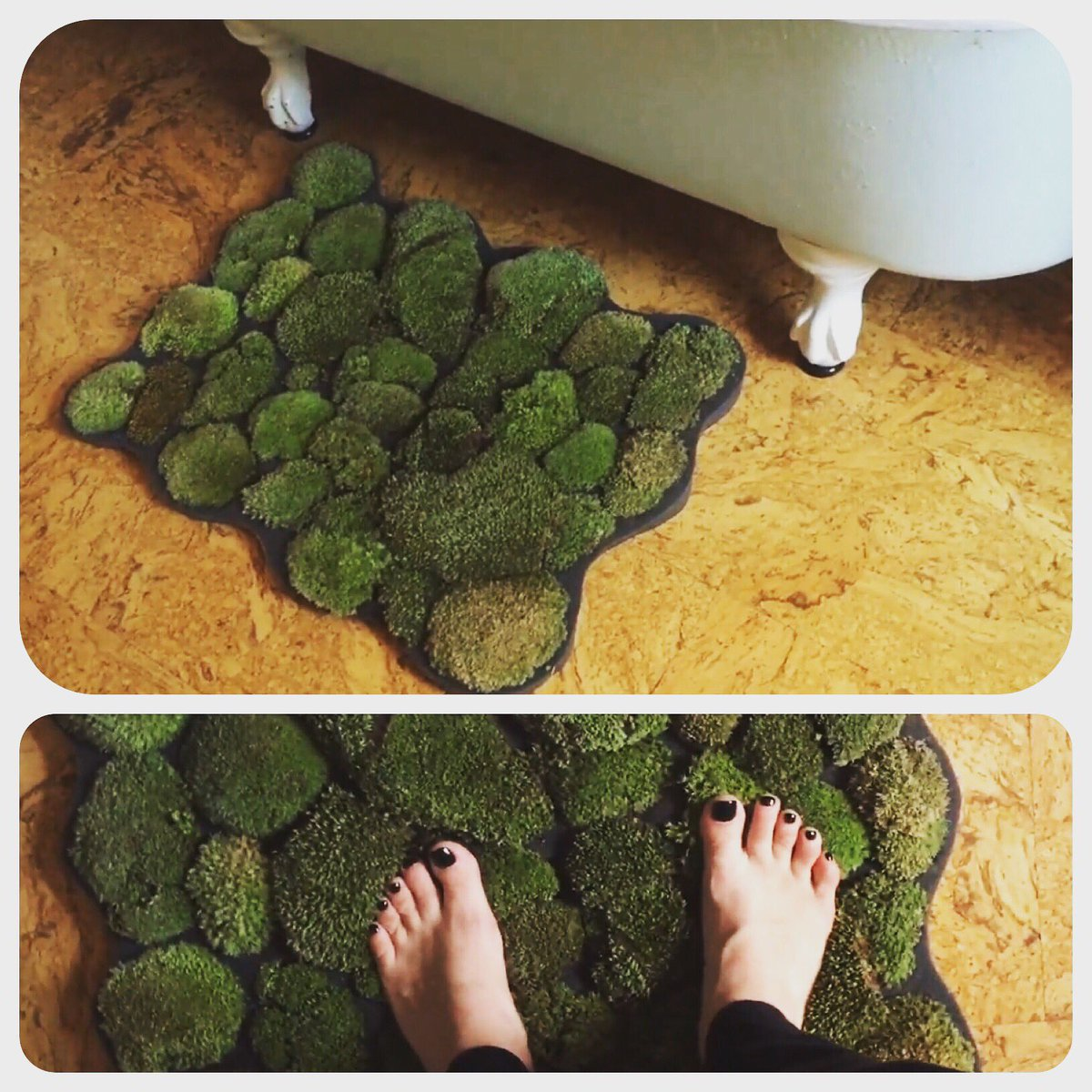 Threadbanger On Twitter The Mat The Myth The Legend Diy Moss Bathmat Alienplant Pleasekittiesdonteatit Https T Co Bj5yexkjvw