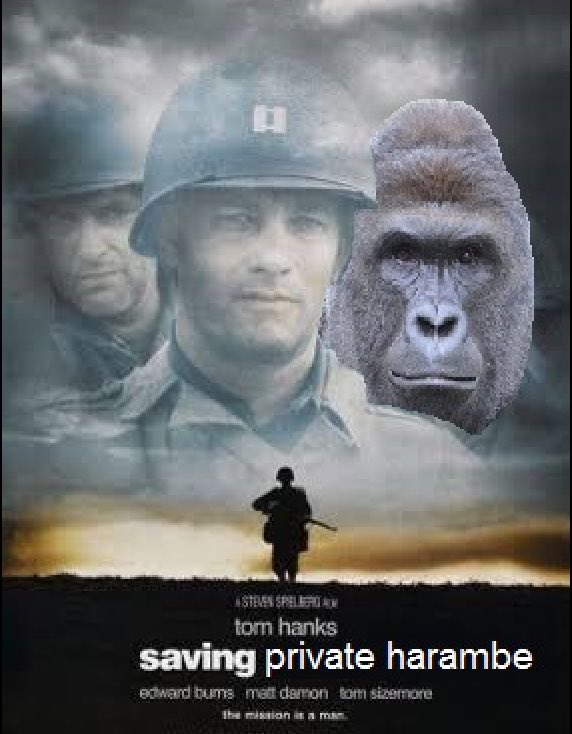 tanner lightning on twitter the one soldier tom hanks couldn t save ripharambe 2months  s