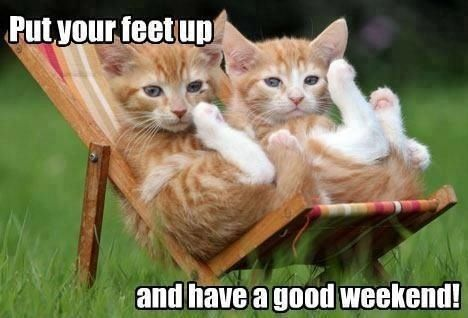 Image result for yay it is friday enjoy your weekend images