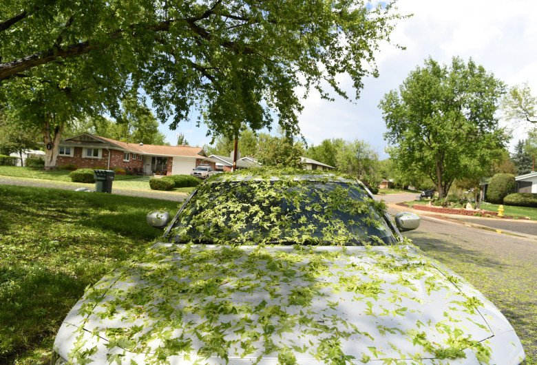 Severe weather: Isolated large hail and high winds possible in Denver metro Friday cowx