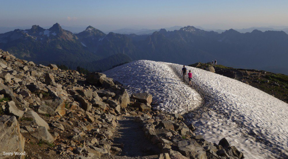 Happy 100th birthday, @NatlParkService! Here's how you can celebrate in WA's national parks