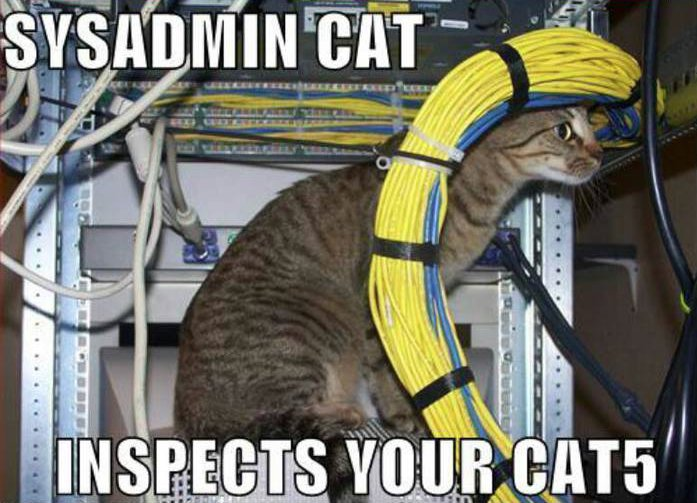 Hey Gang! Take the rest of the day off, we've brought in an expert to cover for you. Happy #SysAdminDay! https://t.co/bIy0cBCS6Y