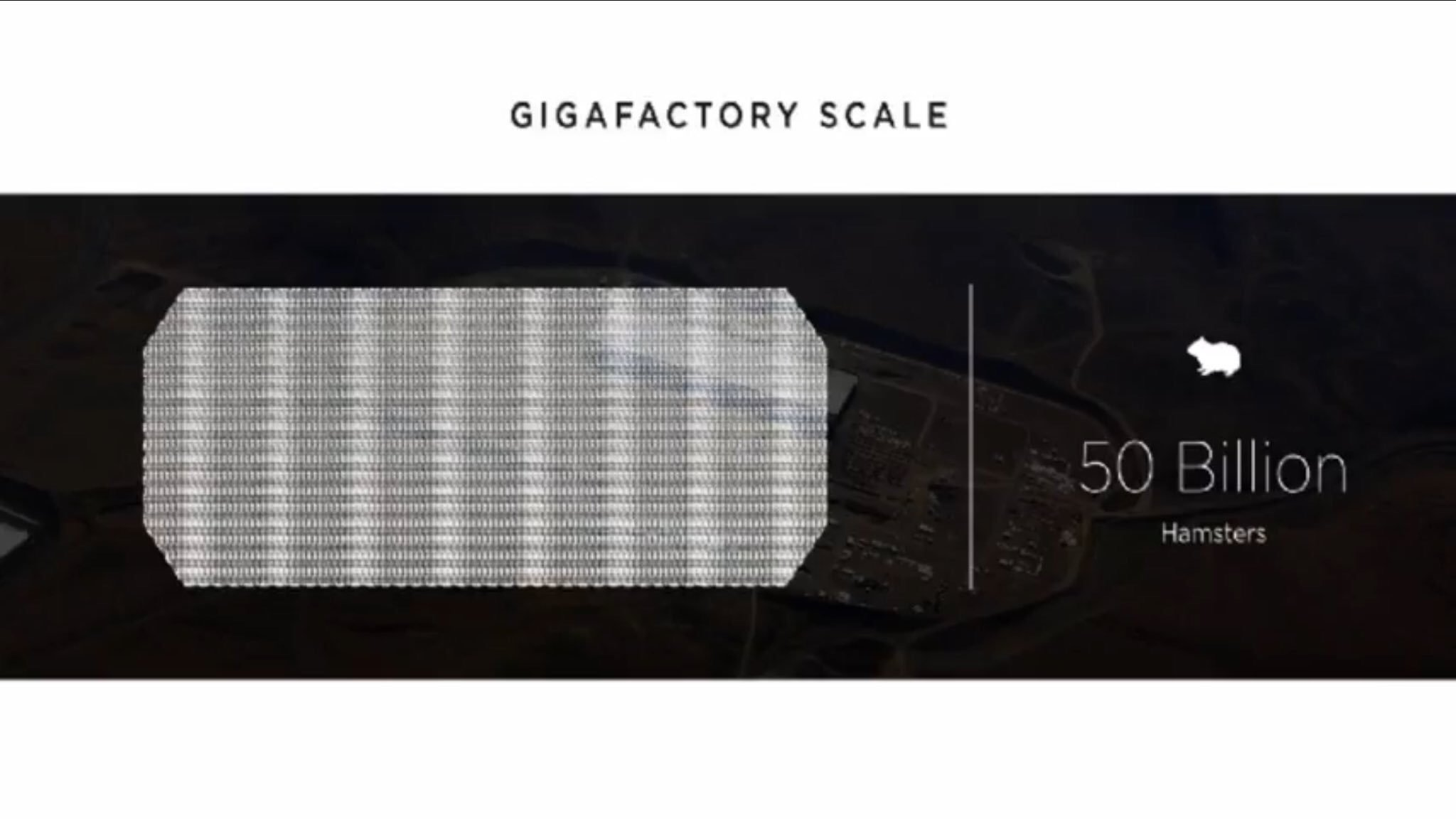 Tesla Gigafactory Scale in Hamsters