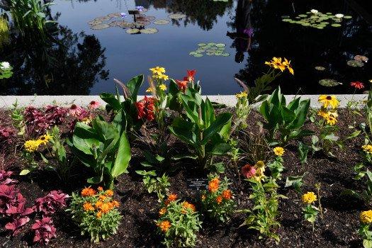 Three new specialty gardens open at Denver Botanic Gardens