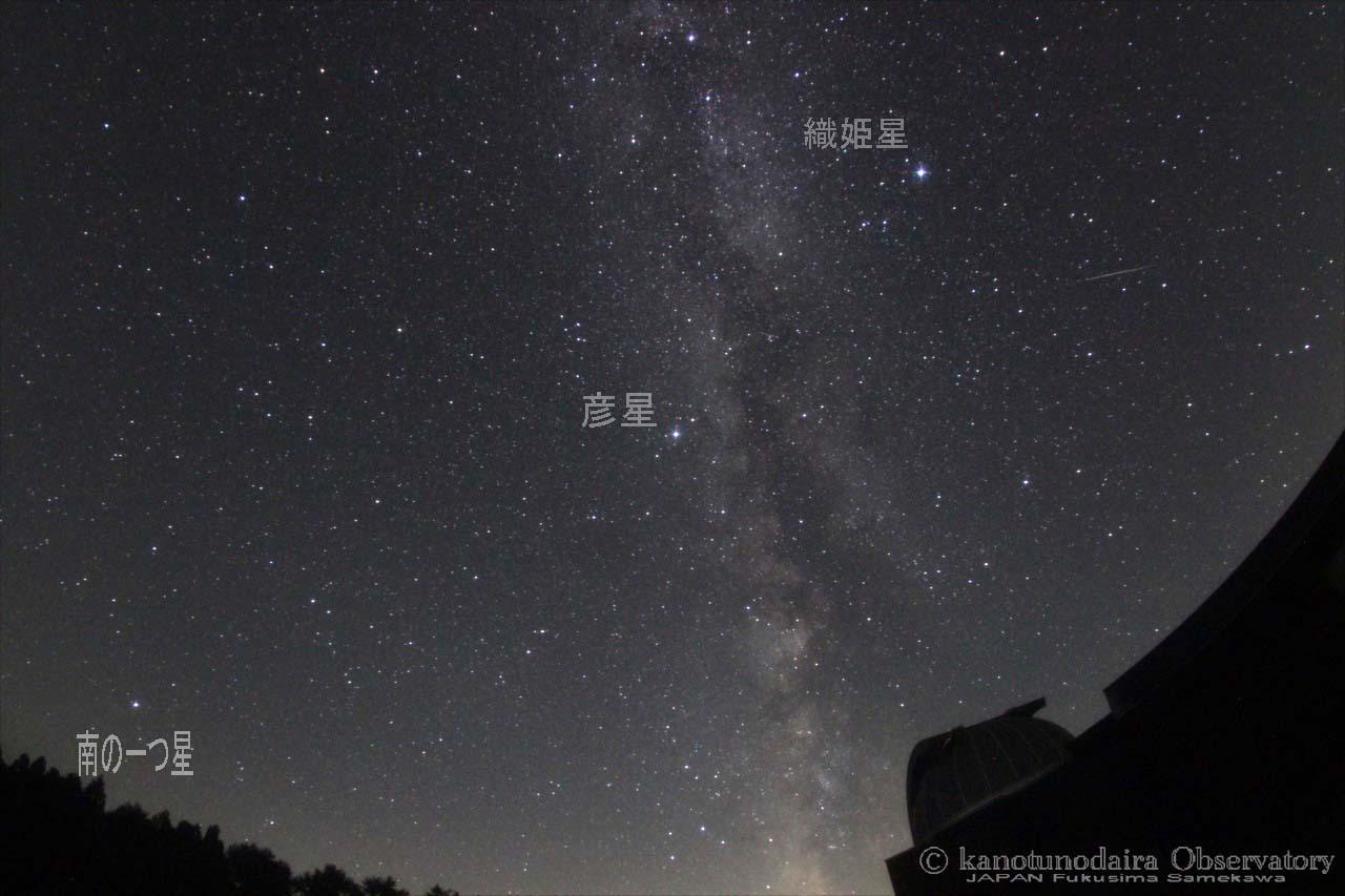 夏の流星群。