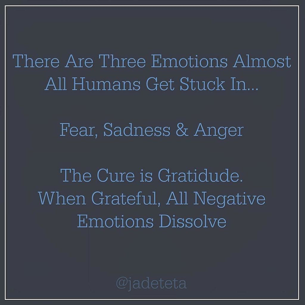 These negative emotions can not exist simultaneously with the feeling of gratitude.  # A d… https://t.co/Bs9IAQ2diF https://t.co/hzxNqk2DHL