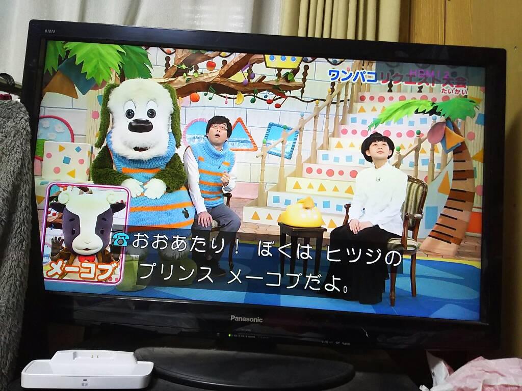 飯田さやか On Twitter メーコブと電話プロフィールの背景ワンパコ
