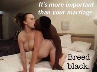 black breeding twitter