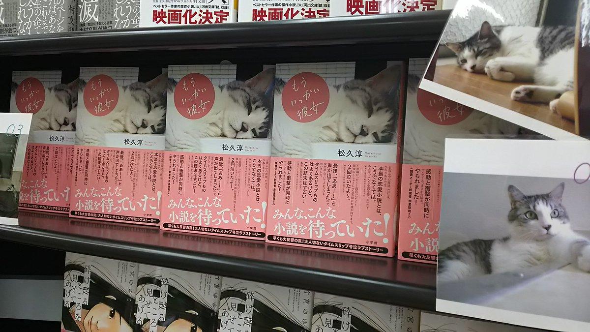 """「もういっかい彼女」松久 享・・・ 老若男女、どの世代の人も楽しめる!そして猫マニアにはたまらない装丁♪ 私の場合、今はすっかり忘れていた""""あの頃"""" を懐かしく思いながら読みました。ツタヤ幡ヶ谷店ではドドーンと展開してますよ~ https://t.co/iYY4SKVu2l"""