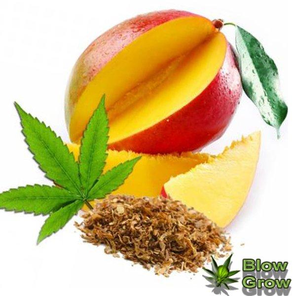Манго и конопля гроубокс для марихуаны