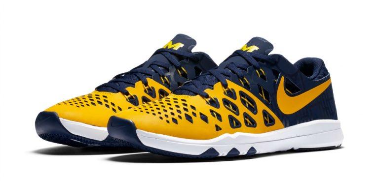 Michigan Nike Week Zero Shoe released
