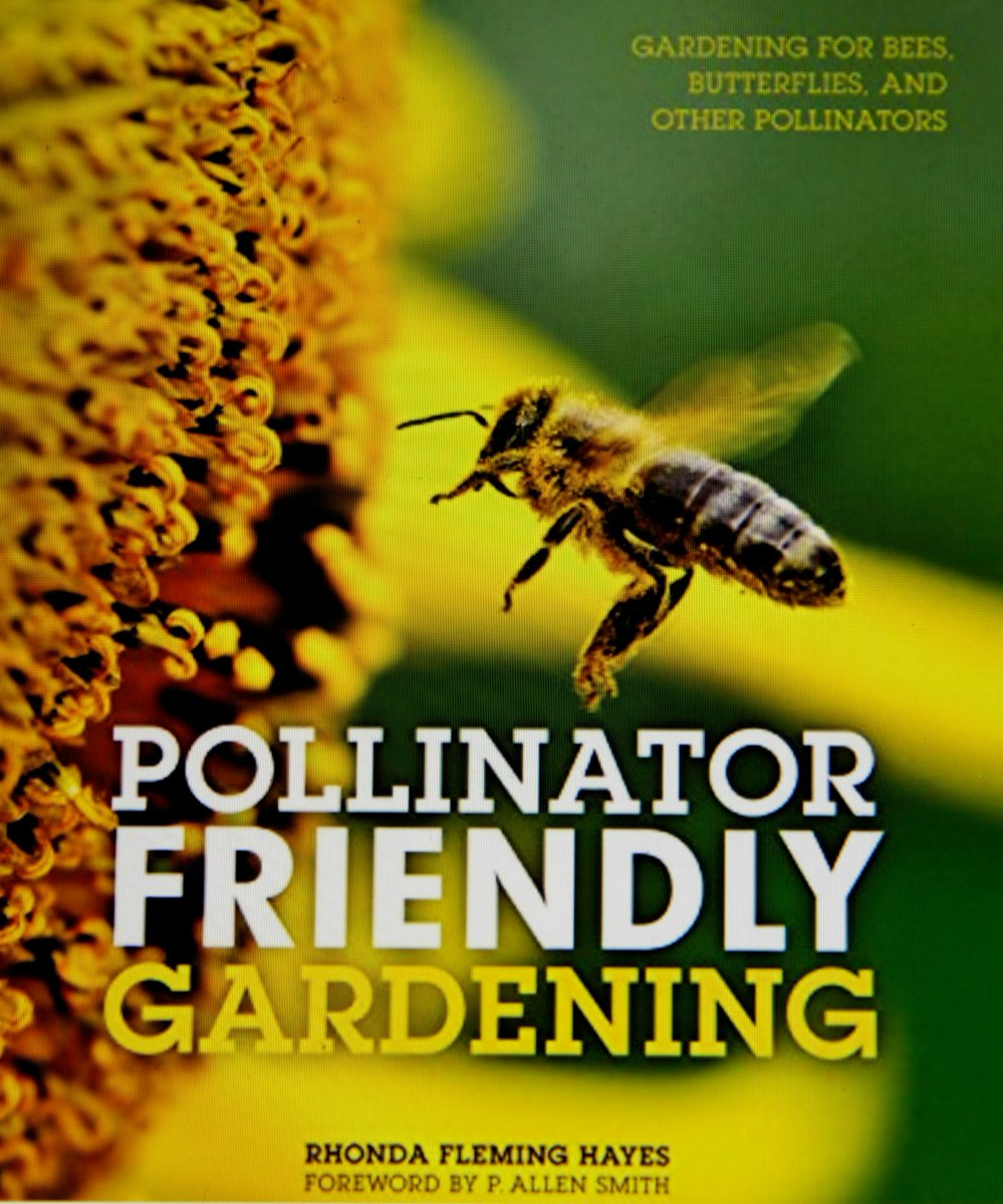 Today we are talking pollinators on #plantchat https://t.co/ys72J62H8j