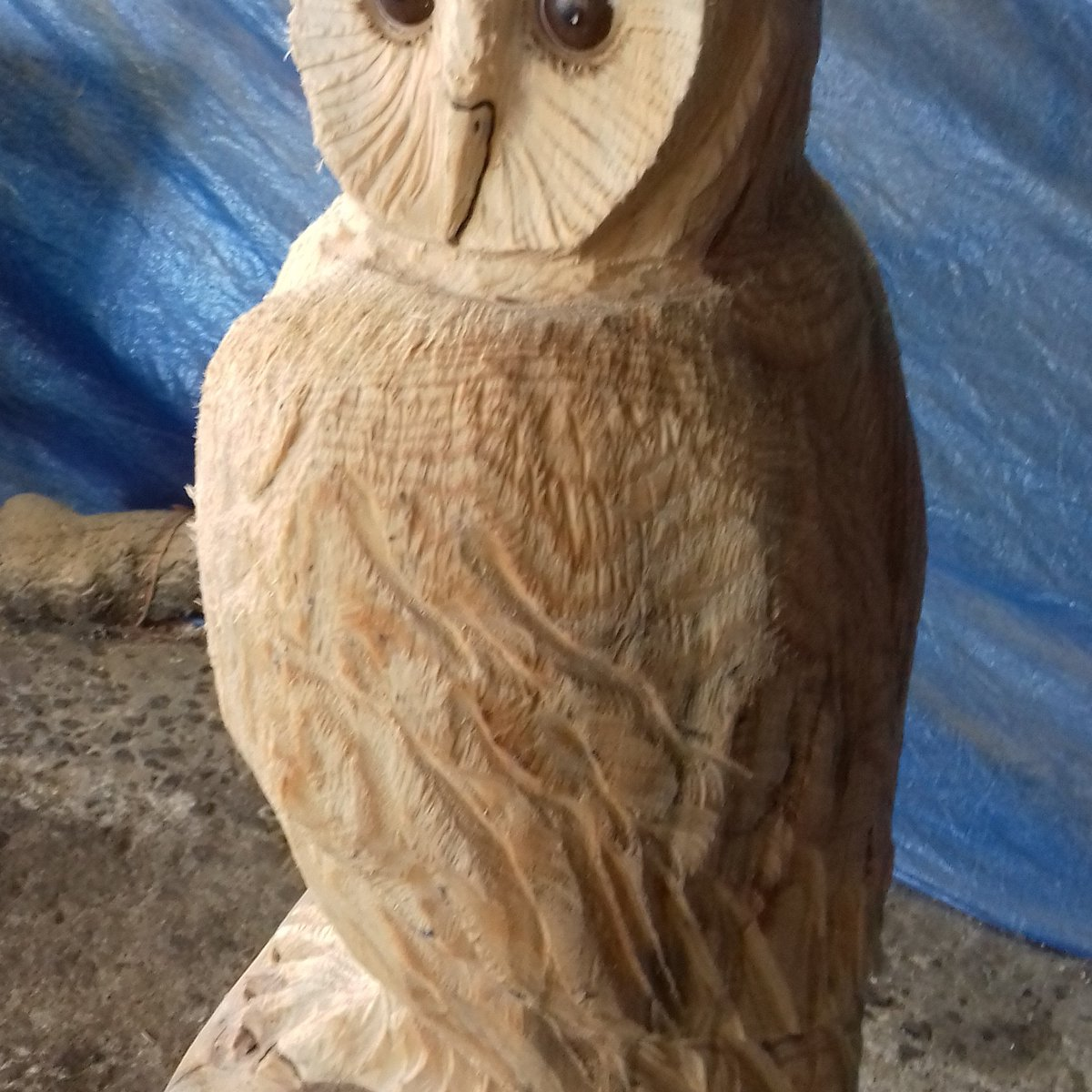 Owl ainsaw carving carved on monkey tree wood