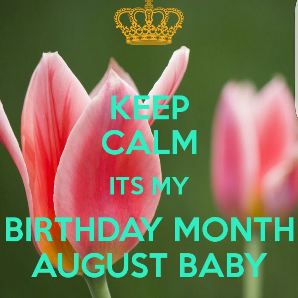 Rebekah Bardencullen On Twitter August Birthday Birthdaygirl