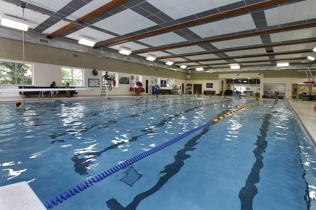 Burlington P R On Twitter Fri Aug 5 Is A Free Timhortons Swim At Aldershot Pool From 1 30 3