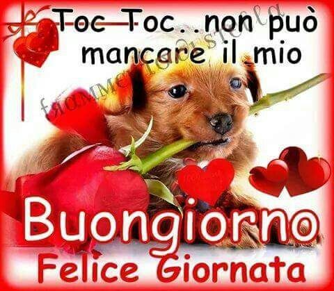 Matteo on twitter doranapolitano buongiorno e buin for Immagini divertenti buongiorno venerdi
