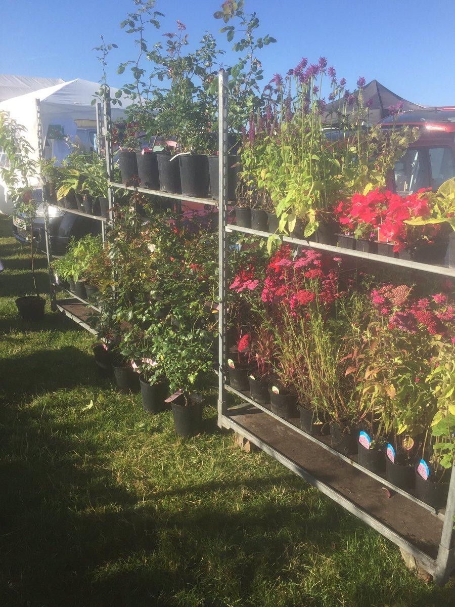 Garden Maintenance (@GardensByChris)   Twitter