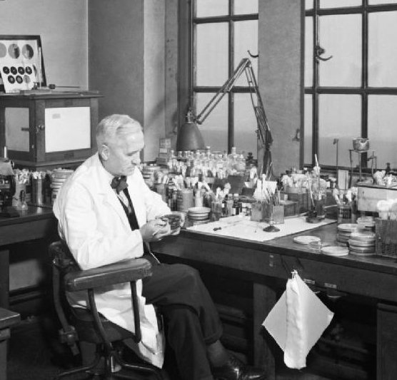 Happy birthday to Sir #AlexanderFleming, famous for discovering #penicillin – he would've been 135 years old today https://t.co/pWfOaSNi1B