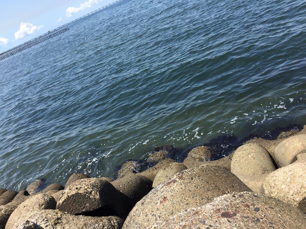 海浜 公園 釣り 袖ヶ浦