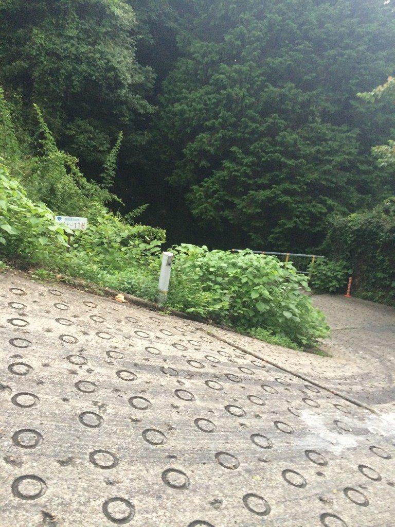 今日通った道は暗峠と言うらしいです。写真では伝わらないのだけど傾斜37度だそうです。 https://t.co/m9U8IGWdHH