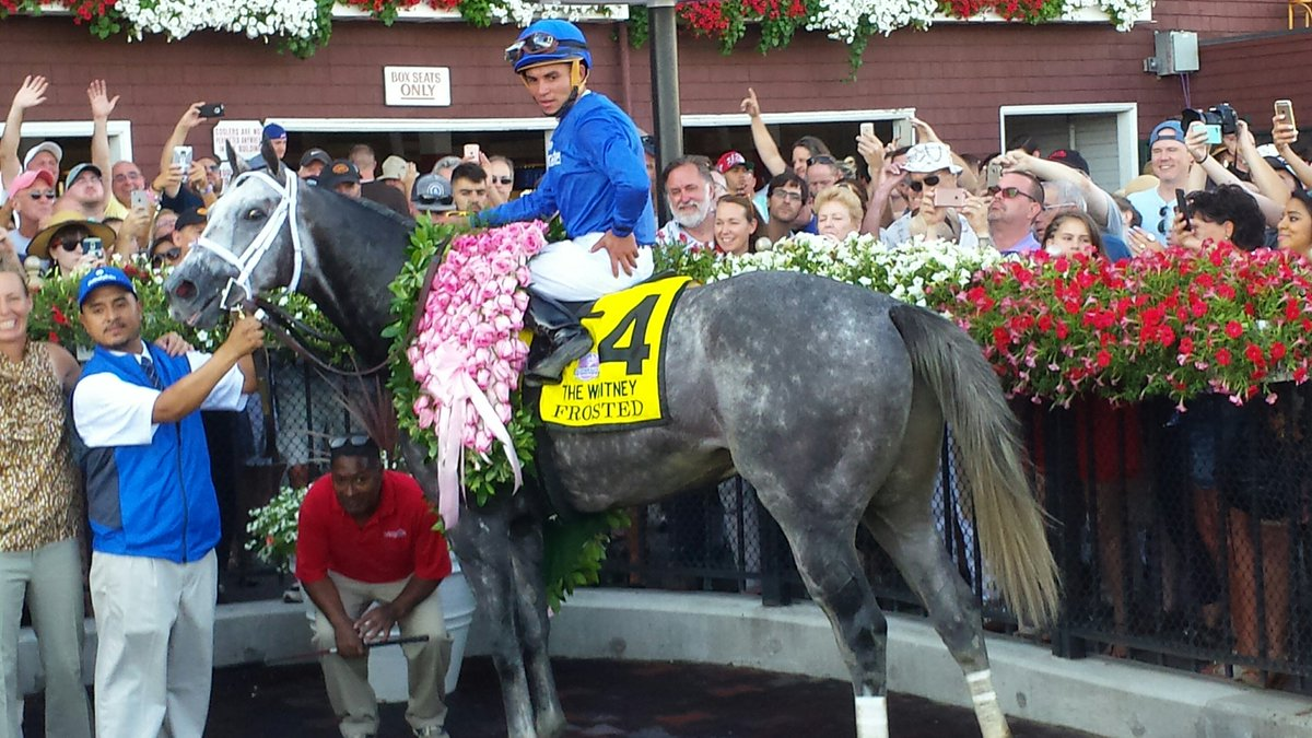 ... And here is Frosted looking even better after the Whitney. https://t.co/xMkwuk5YDI