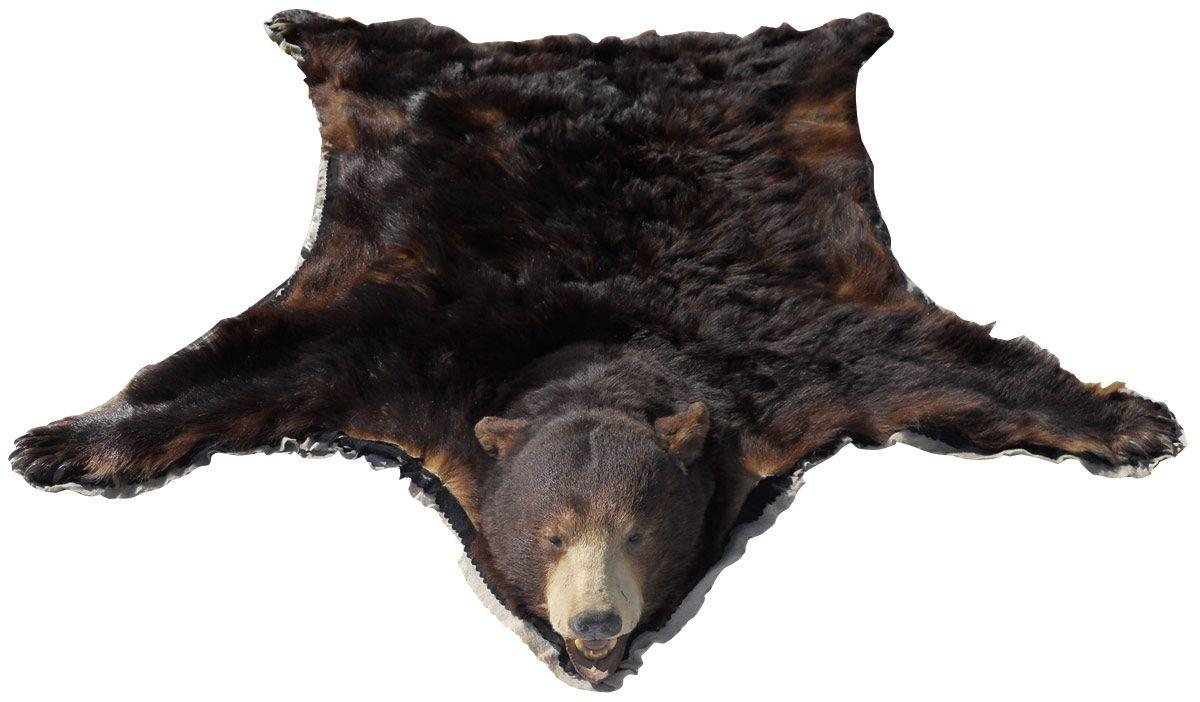m details catalog genuine felt border with claws head index skin rug and previousnext approximately mounted x bear lot