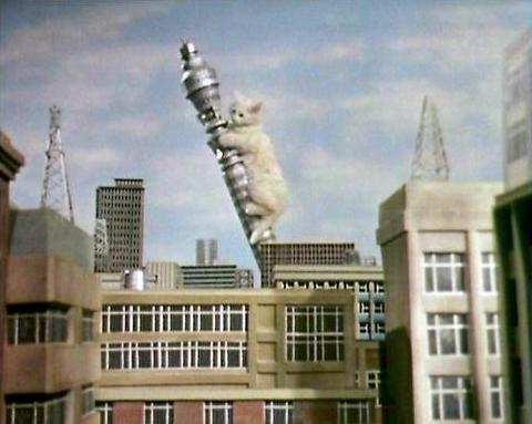 In aid of #InternationalCatDay , thought I'd treat you all to this blast from the past #KittenKong #TheGoodies https://t.co/hYaxm9VcWu