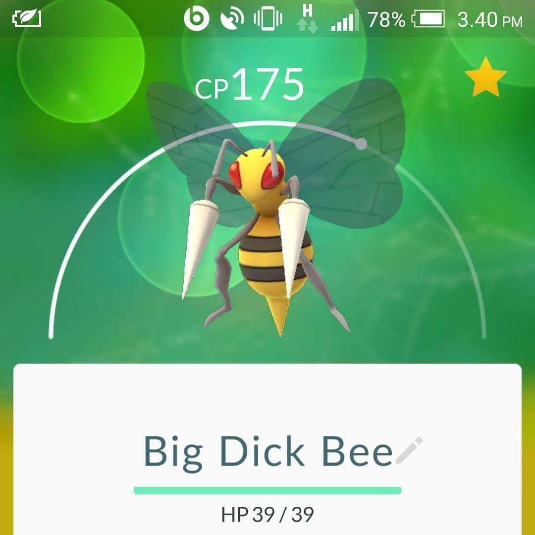 big dick bee