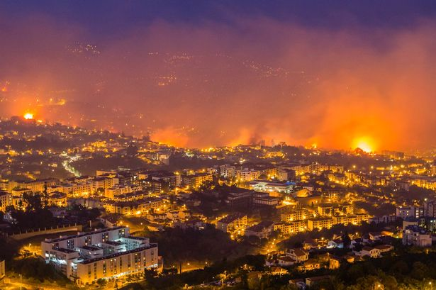 Forest fires sweep through Portugal forcing hundreds to flee homes #PrayForPortugal https://t.co/PzdrSkcsTe