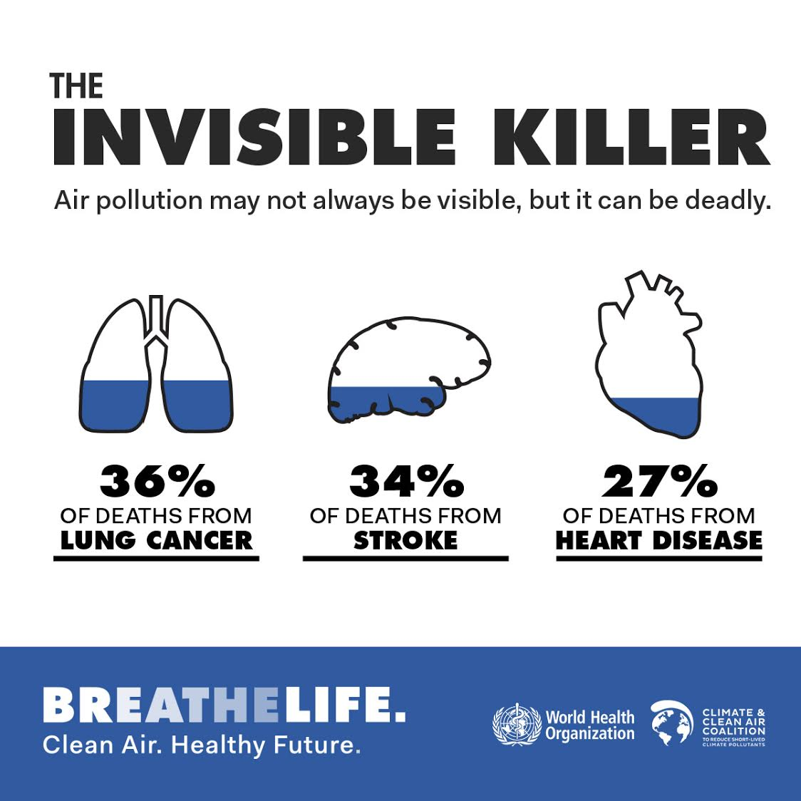 #AirPollution is an invisible killer. We may not always see it, but it can be deadly. #BreatheLife