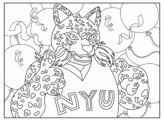 NYU Bobcat on Twitter: