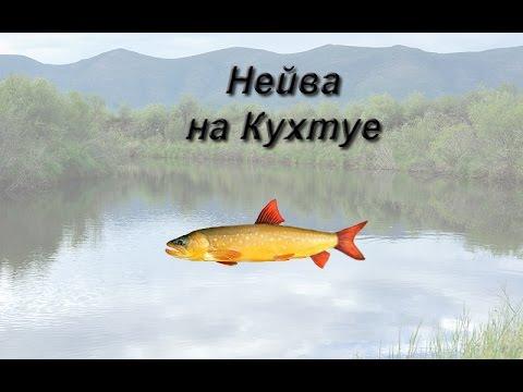 рыбалка 3 вуокса густера