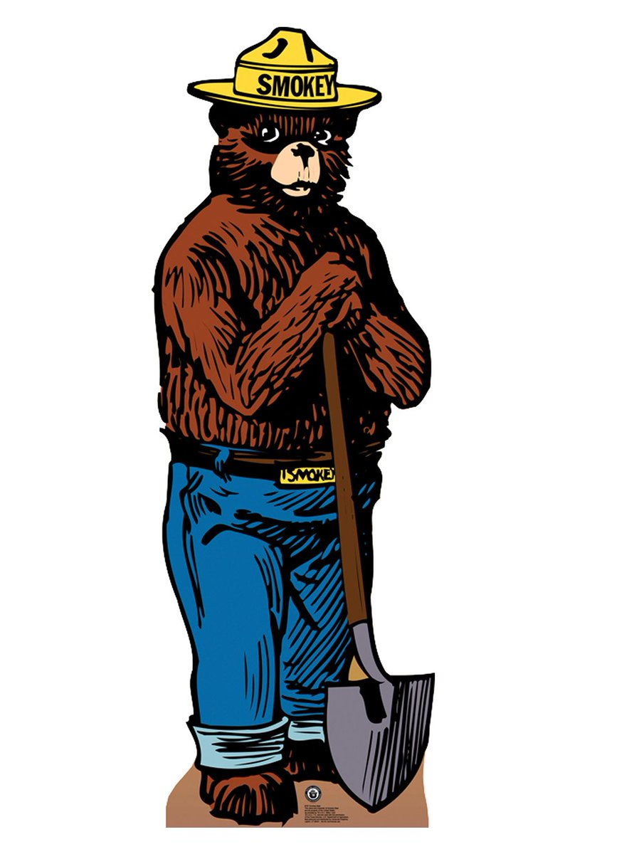 is gay bear Smokey