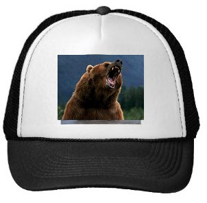 I'll be wearing my bear hat when trading the #stock markets in the short term. $SPY $FB $TSLA $VIX $AAPL $NFLX $AMZN https://t.co/NdR1CNzRsw