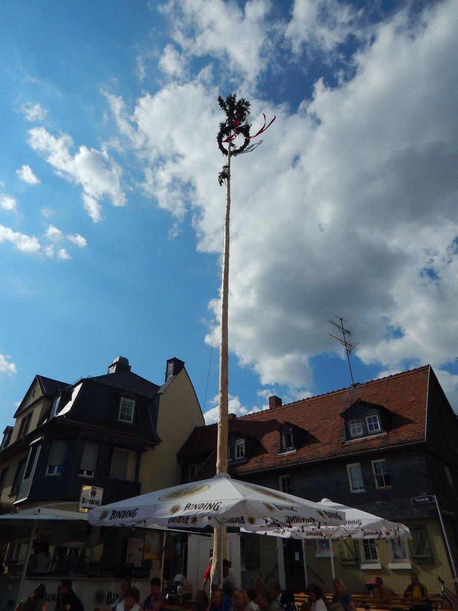 tipp frankfurt