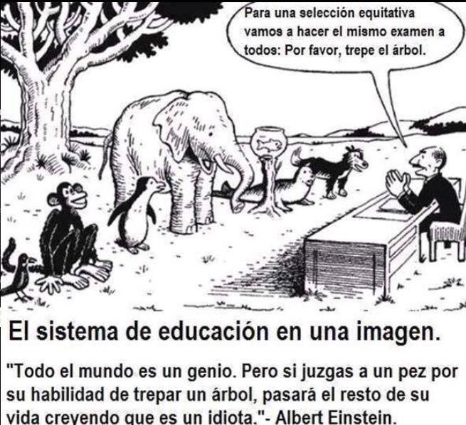 el sistema educativo actual en una imagen Cpk7HEjXgAA0Aoa