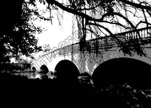 Shadow bridge. #artforsale #art #artist #gallery #artprint #limitededition #blackandwhitephotography pic.twitter.com/VGOKr0x5TB 10