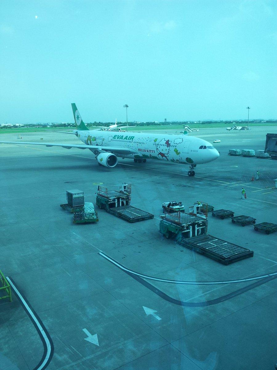 ゆぅみんの天使ちゃん on Twitter \u0026quot;台湾のエバー航空ハローキティジェットがぐでたまジェットになるの噂がある 韓国行った時いつもkittyちゃんの飛行機(∩´﹏`∩)