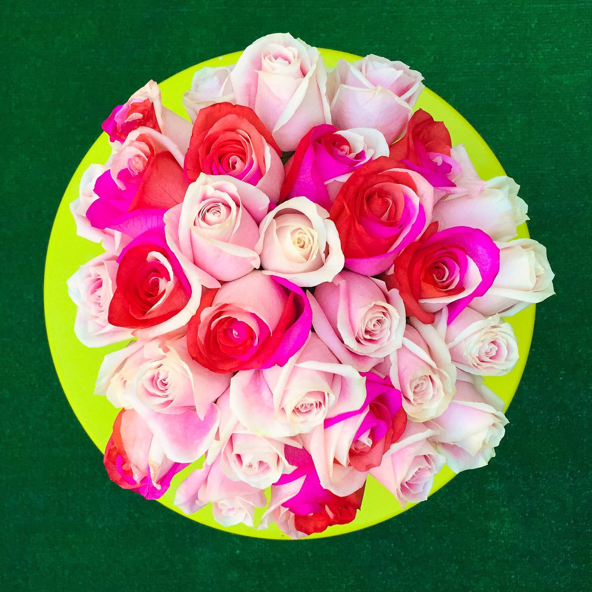 A combination of blush-colored #roses I bought for myself with a delivery of hot pink @ftdflowers!