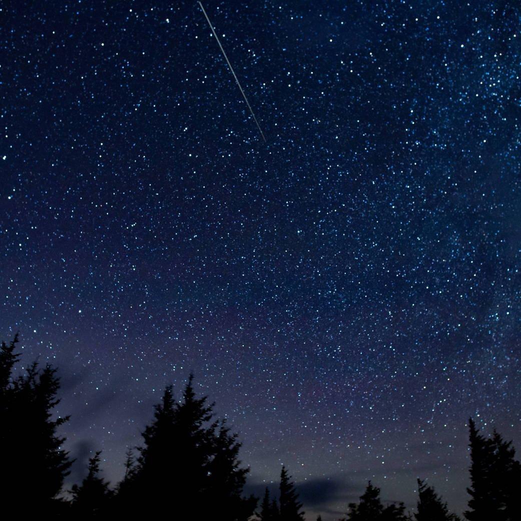 Catch a falling star!