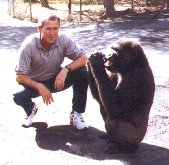 BREAKING: Here's a Photo of George W. Bush Posing with Harambe's Mom: https://t.co/GrcMJAVFz9