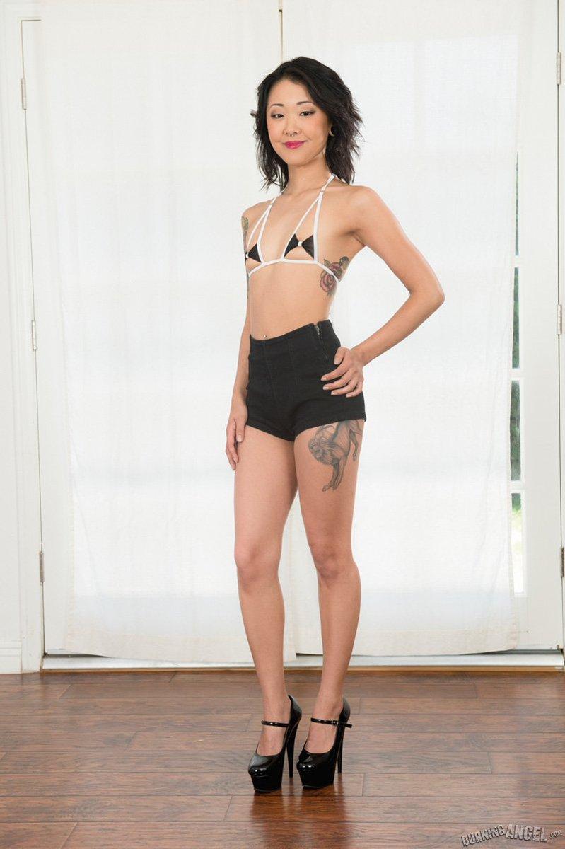 "porn-star on twitter: ""cute @xokittysaya exposes her tiny tits"