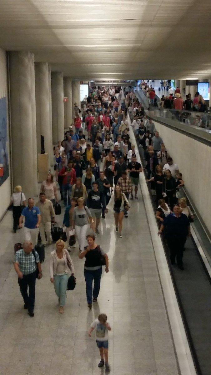 Lo que se dice llegar en manada. Aeropuerto de Palma de Mallorca, 8:30 horas... https://t.co/7cDavZMuRi