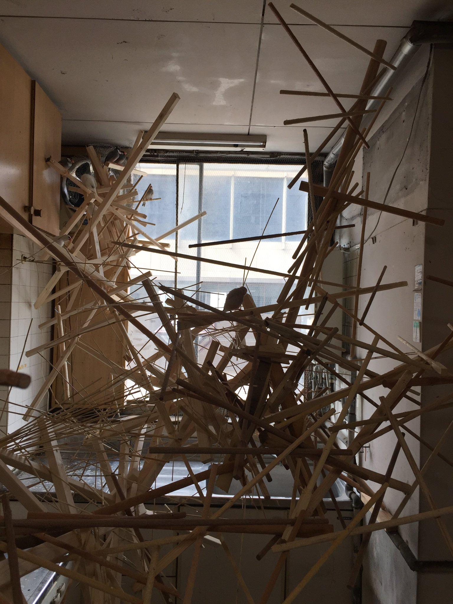 画像,あいちトリエンナーレ、豊橋のラウラ・リマ作品。4階建ての小さな家が丸ごと、小鳥の家になってる。人間は二重ドアになった金網から「おじゃまします」って言いながら入る…