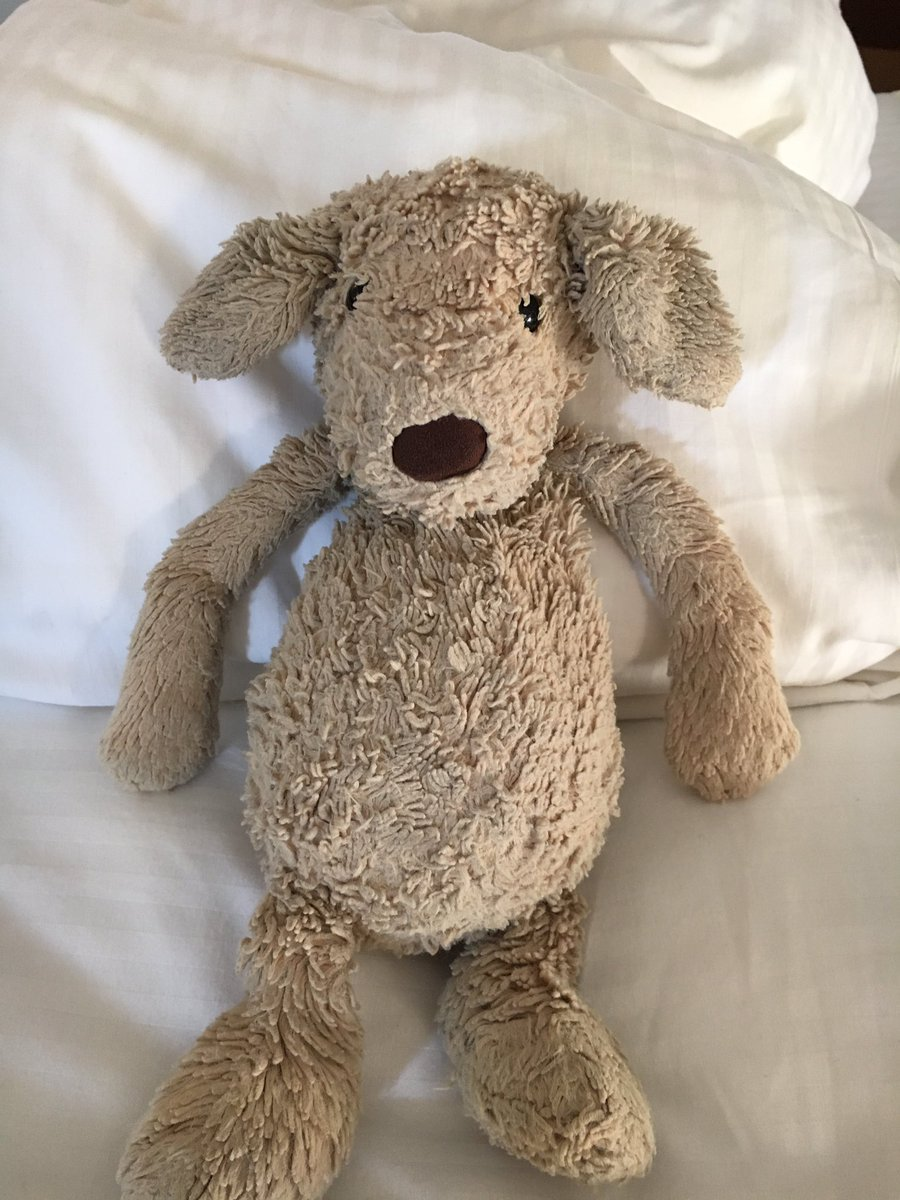#lost RT @m_bertozzi our son's fav teddy went missing on 8:15am #ferry from #VineyardHaven - can you put out an APB! https://t.co/0WotFwDZt8