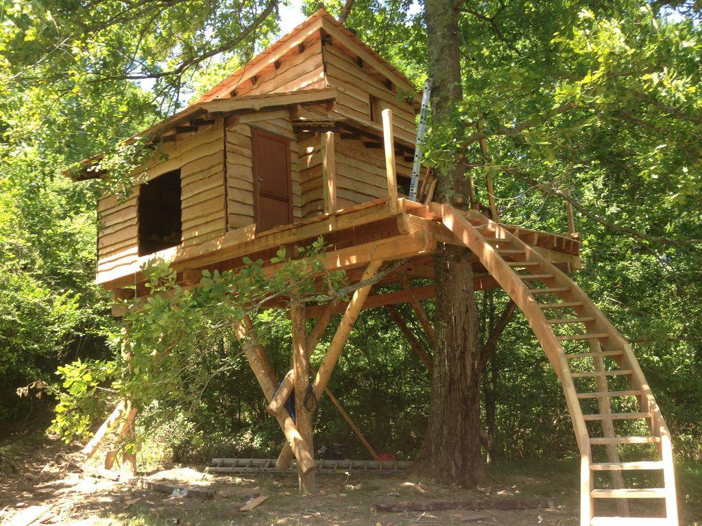 Till the cat on twitter dis tu t 39 souviens quand c 39 est - Construire une cabane de jardin ...