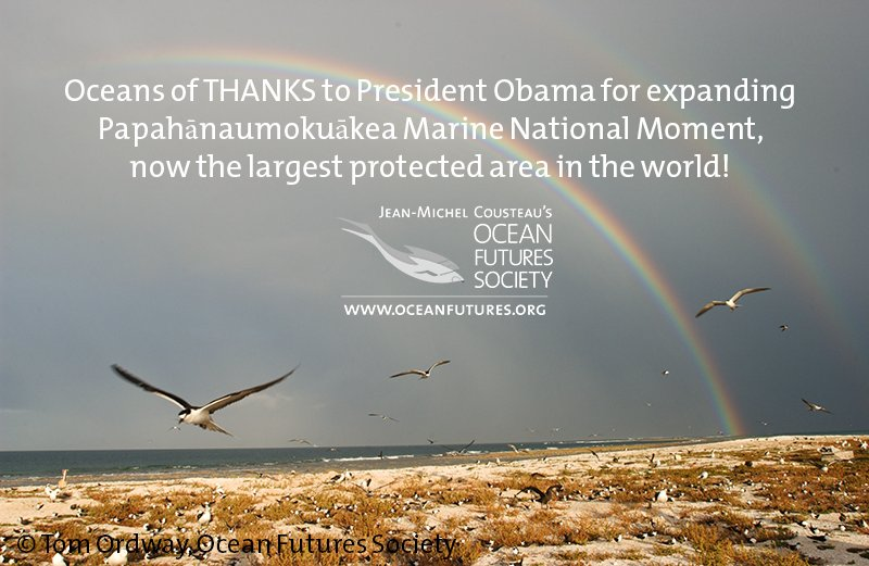 Oceans of thanks to @POTUS & all those who work hard in protecting our blue planet! #Papahānaumokuākea https://t.co/QpHfe0thZy